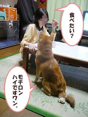 もみじまんじゅう(カスタード)