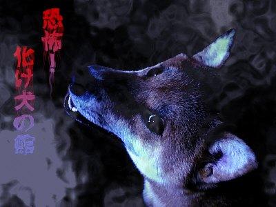 恐怖!化け犬の館